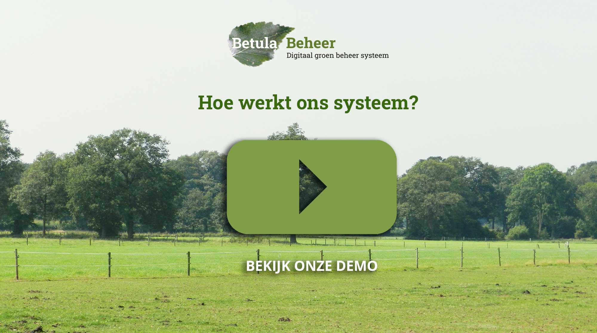 Afbeelding van een placeholder voor de demofilm van Betula-Beheer